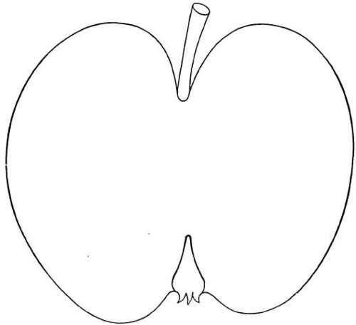 Description Of Apple Varieties: H. Part 3