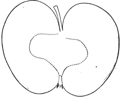 Description Of Apple Varieties: P