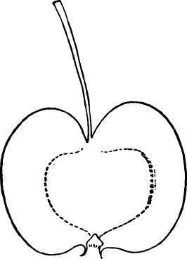 Crab-Apples. Part 8