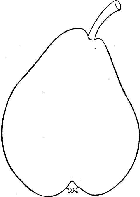 Varieties Of The Pear: P