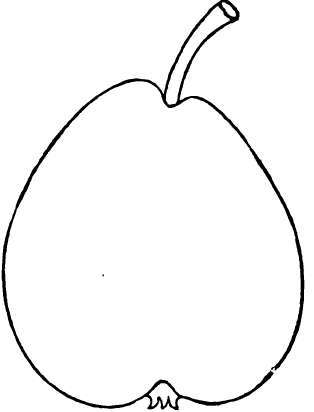 Varieties Of The Pear: S