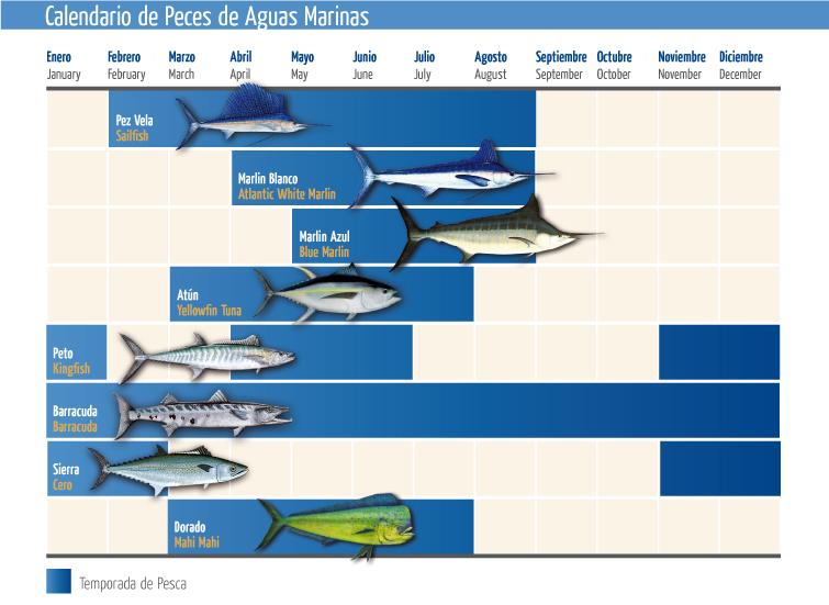 Calendario De Pesca.Calendario De Pesca Caribe Chetumal Tours