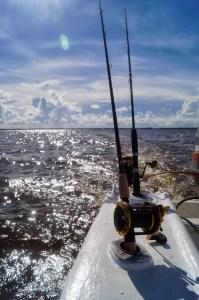 tour de pesca en la bahia de chetumal (3)