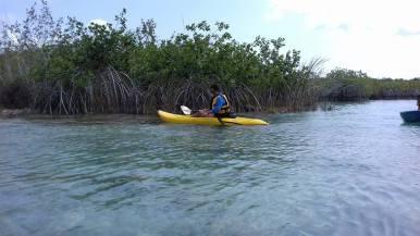 kayaking-estero-chac-chetumaltours.com (3)