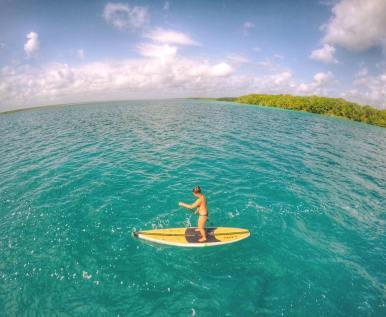 paddle boarding bacalar -buena vista (5)