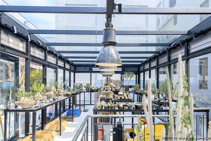 20210226171739 22 - 台中最新仙人掌沙漠秘境!絕美清水模透明玻璃溫室,還能吃得到仙人掌千層蛋糕!