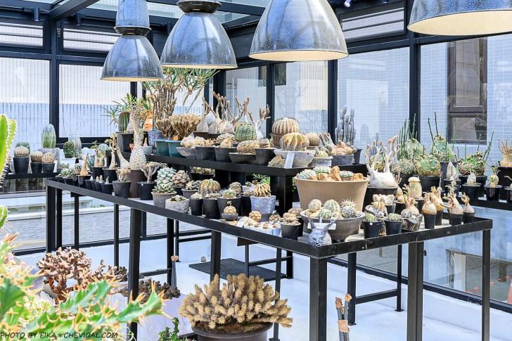 20210226171741 8 - 台中最新仙人掌沙漠秘境!絕美清水模透明玻璃溫室,還能吃得到仙人掌千層蛋糕!
