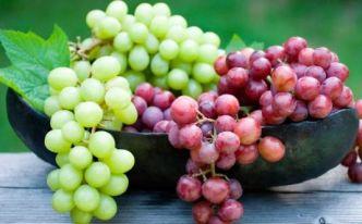 grapes-smart-cooky
