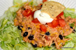 Crock Pot Mexican Chicken - Chew Nibble Nosh