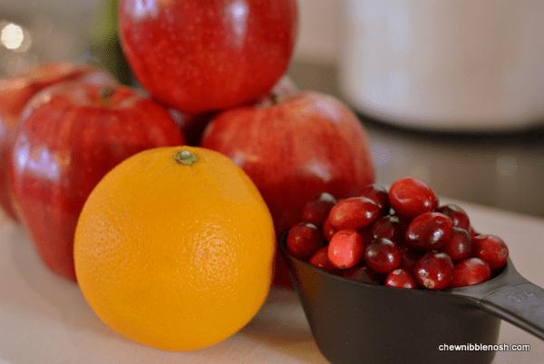 Cranberry Orange Apple Crisp 2 - Chew Nibble Nosh