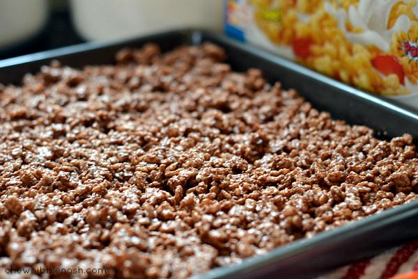 Chocolate Peanut Butter Crunch Ice Cream Cake - Chew Nibble Nosh 3