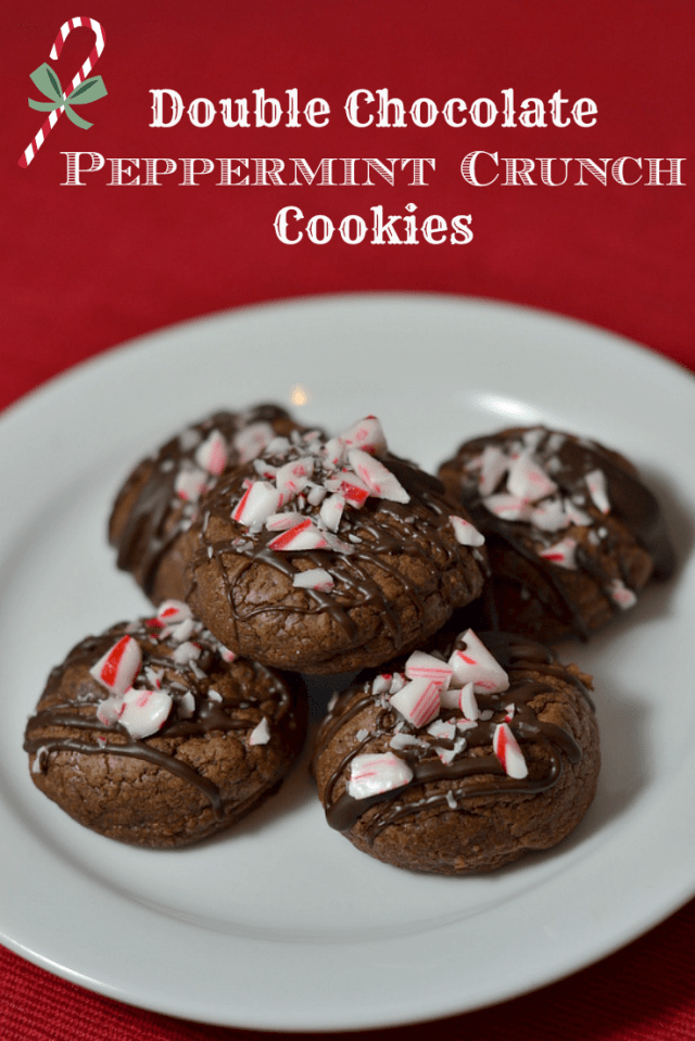 Double Chocolate Peppermint Crunch Cookies - Chew Nibble Nosh