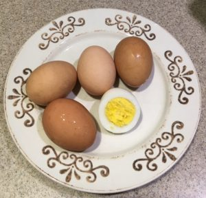 Eggs from our backyard hens.