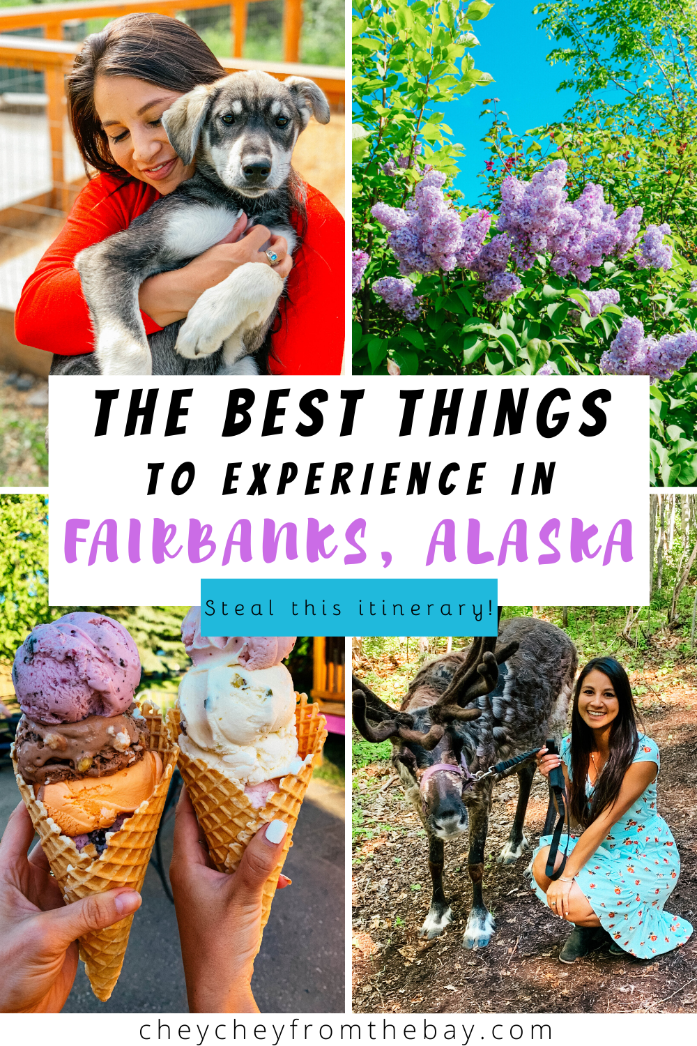 Check out this six-day itinerary of the best things to do in Fairbanks, Alaska during Midnight Sun Season including where to eat and drink; top places to pet reindeer and kennel dogs; how to visit the Arctic Circle; which hot springs are worth going to; and so much more!