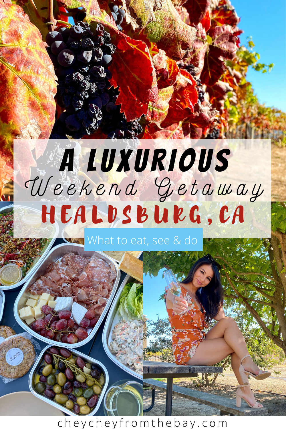 Here's your 48 hour guide to a luxurious weekend getaway in Healdsburg, California! Wineries, hikes, delicious food and more awaits visitors!
