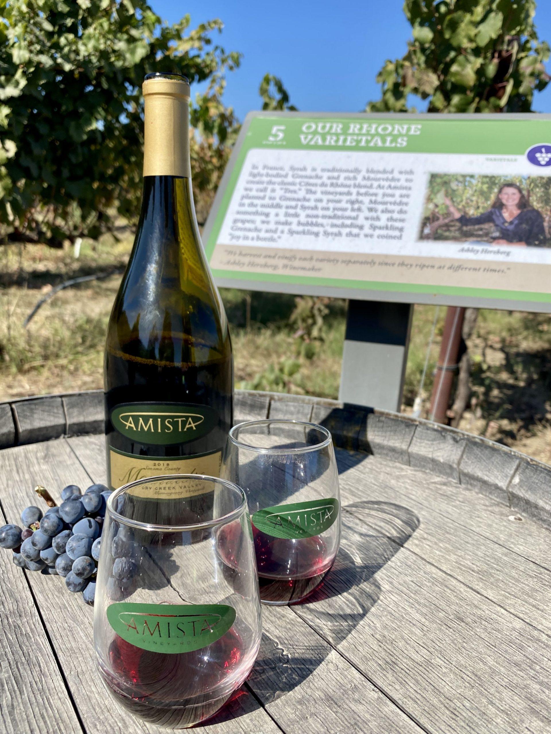 Wine tasting at Amista