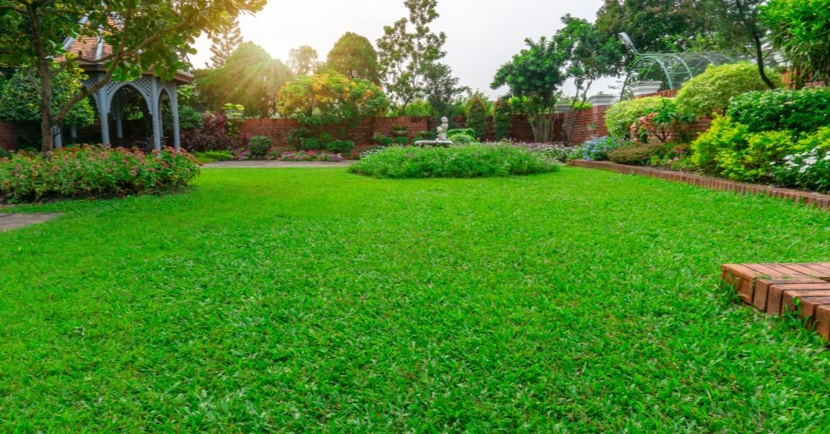 vacation lawn care tips cheyenne www.cheyennehauling.com