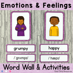 Emotions and Feelings Word Wall Words
