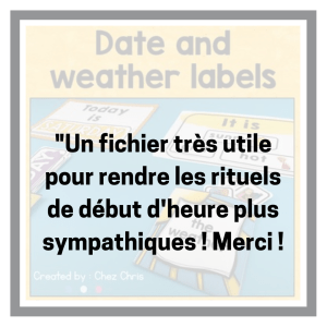 Date and weather labels feedback