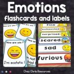 Le vocabulaire des émotions en anglais : couverture de la ressource