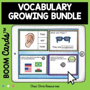 Image de couverture du bundle des boom cards de vocabulaire