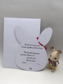 invitation d'anniversaire sylvanian verso