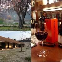 Santiago Surrounds | Snow + wine