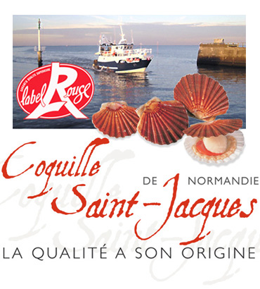 Visuel Coquille Saint-Jacques Label Rouge