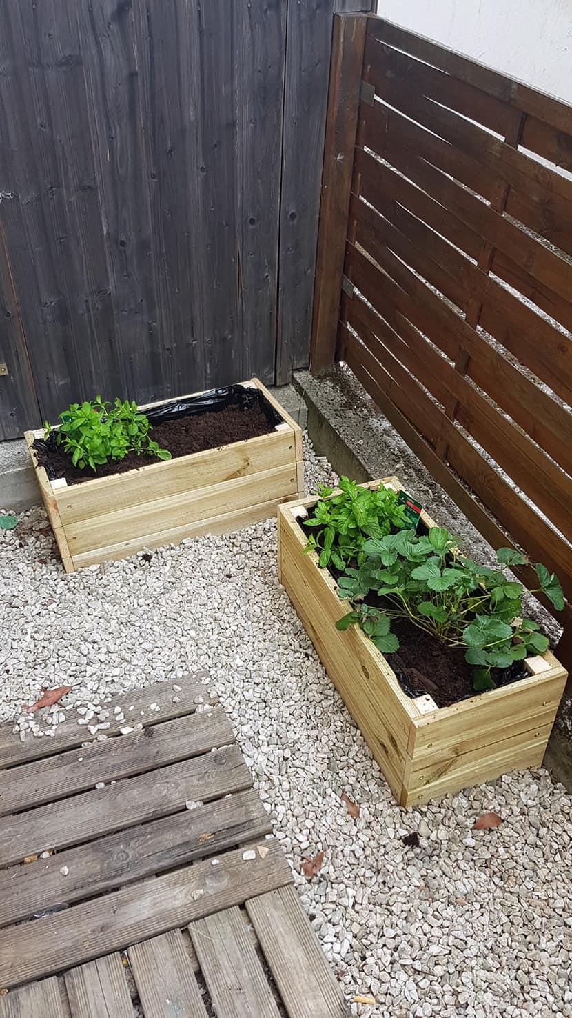 menthe et fraise dans jardiniere jardin - 8 DIY pour décorer le balcon