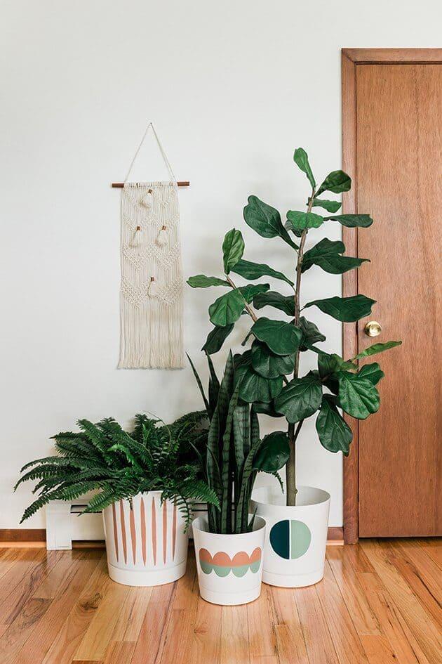 plante depollutante decoration maison  - 8 gestes simples pour réduire la pollution de l'air intérieur
