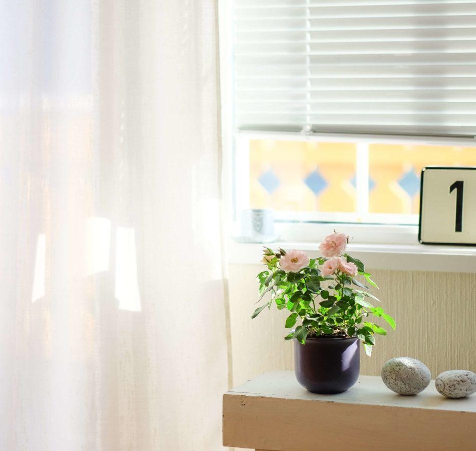 Comment appliquer un brise-vue pour fenêtre ?