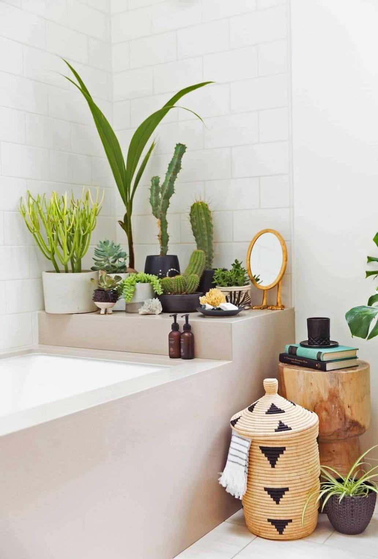 une salle de bain avec une accumulation de plante en bord de baignoire 2 - Salle de bains ancienne : 8 astuces pour la rénover !