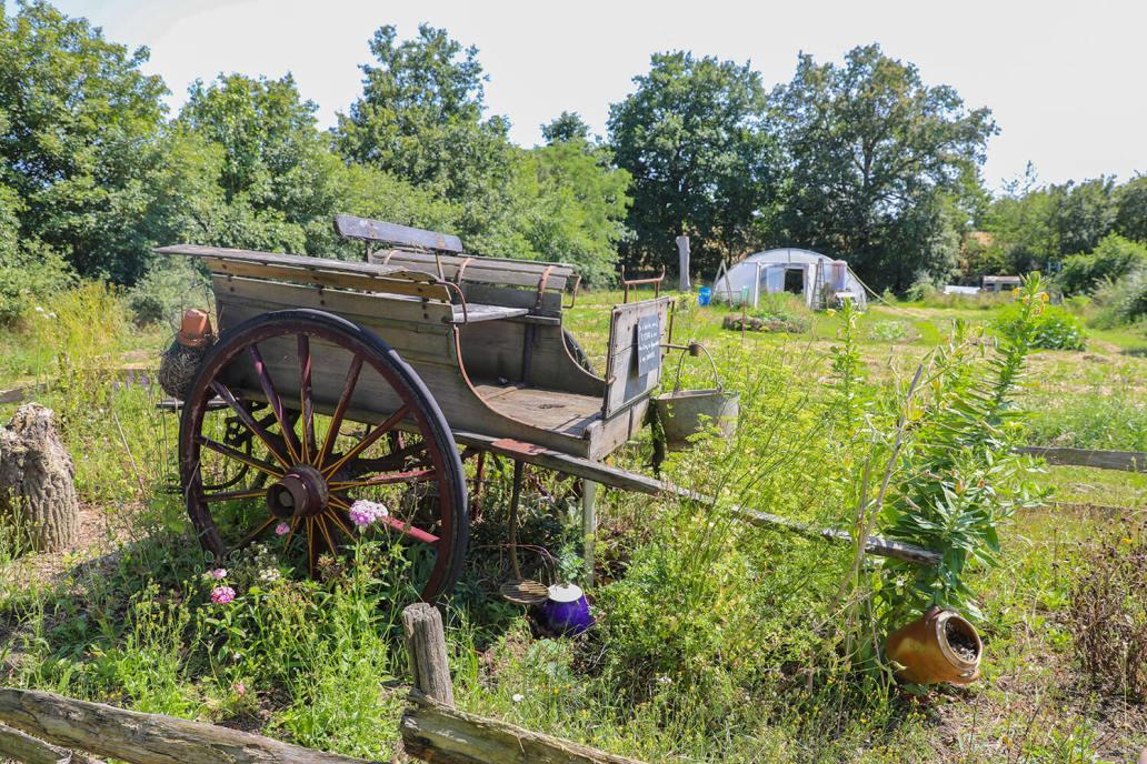 La decoration du potager permaculture  - Potage et Nature : une ode à la permaculture au coeur de la Bretagne