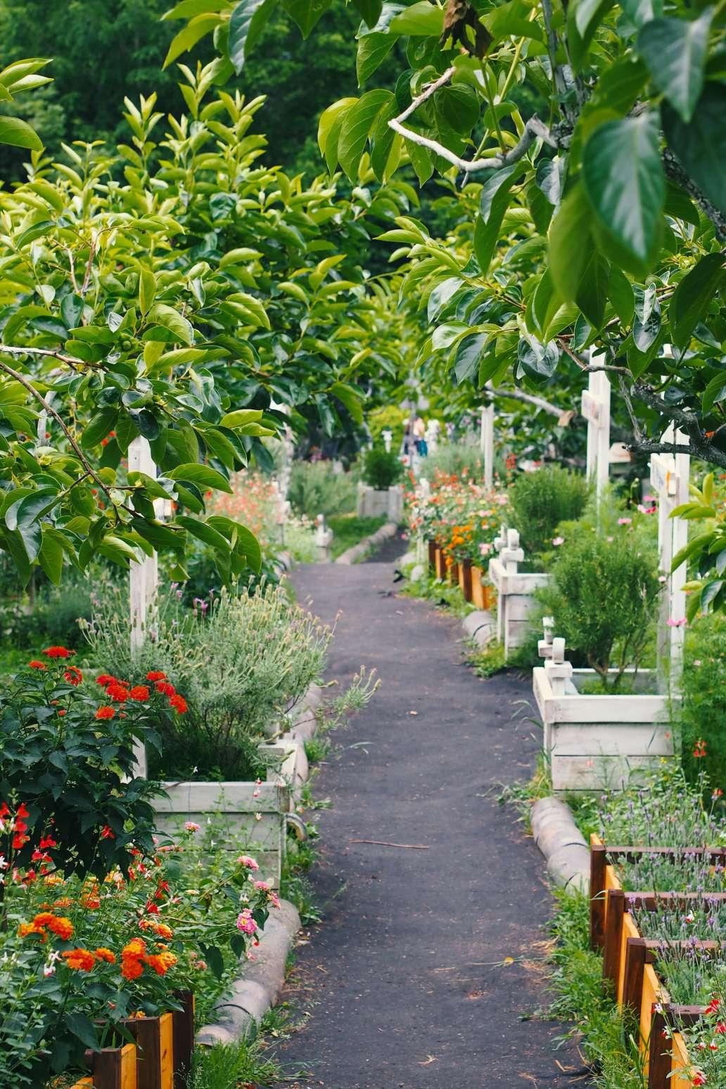 jade seok UGMGdEeifvA unsplash 2 1365x2048 - Comment aménager et préparer son jardin à l'arrivée du printemps