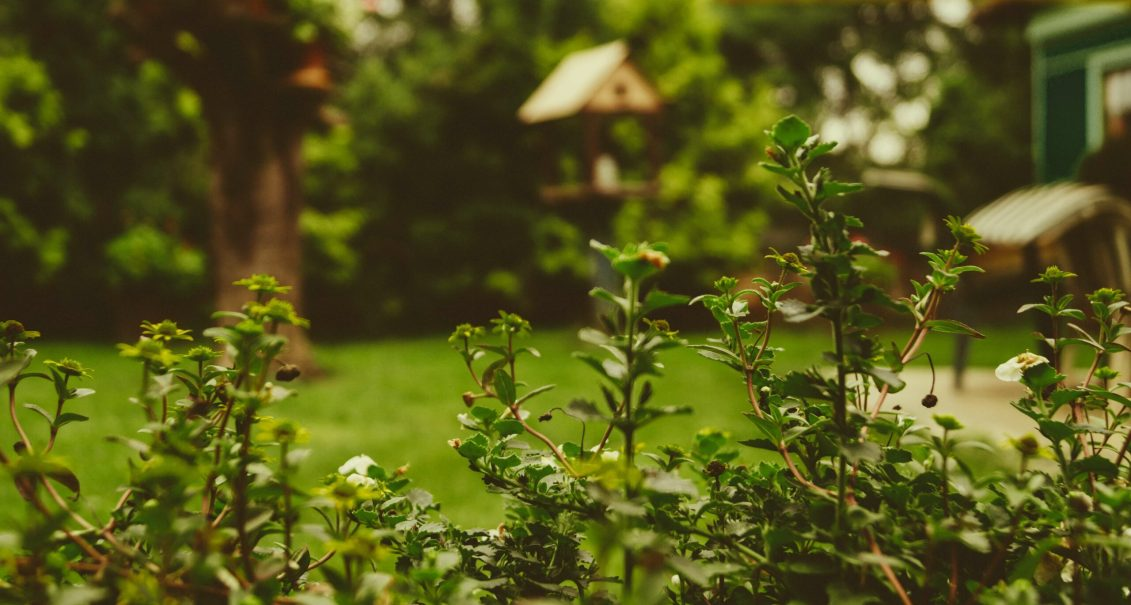 Quelques astuces pour bien aménager son jardin