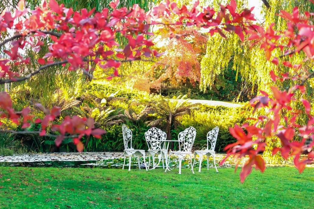 rob sheahan MNp5RQcs2ps unsplash 2 2048x1364 - Quelques astuces pour bien aménager son jardin
