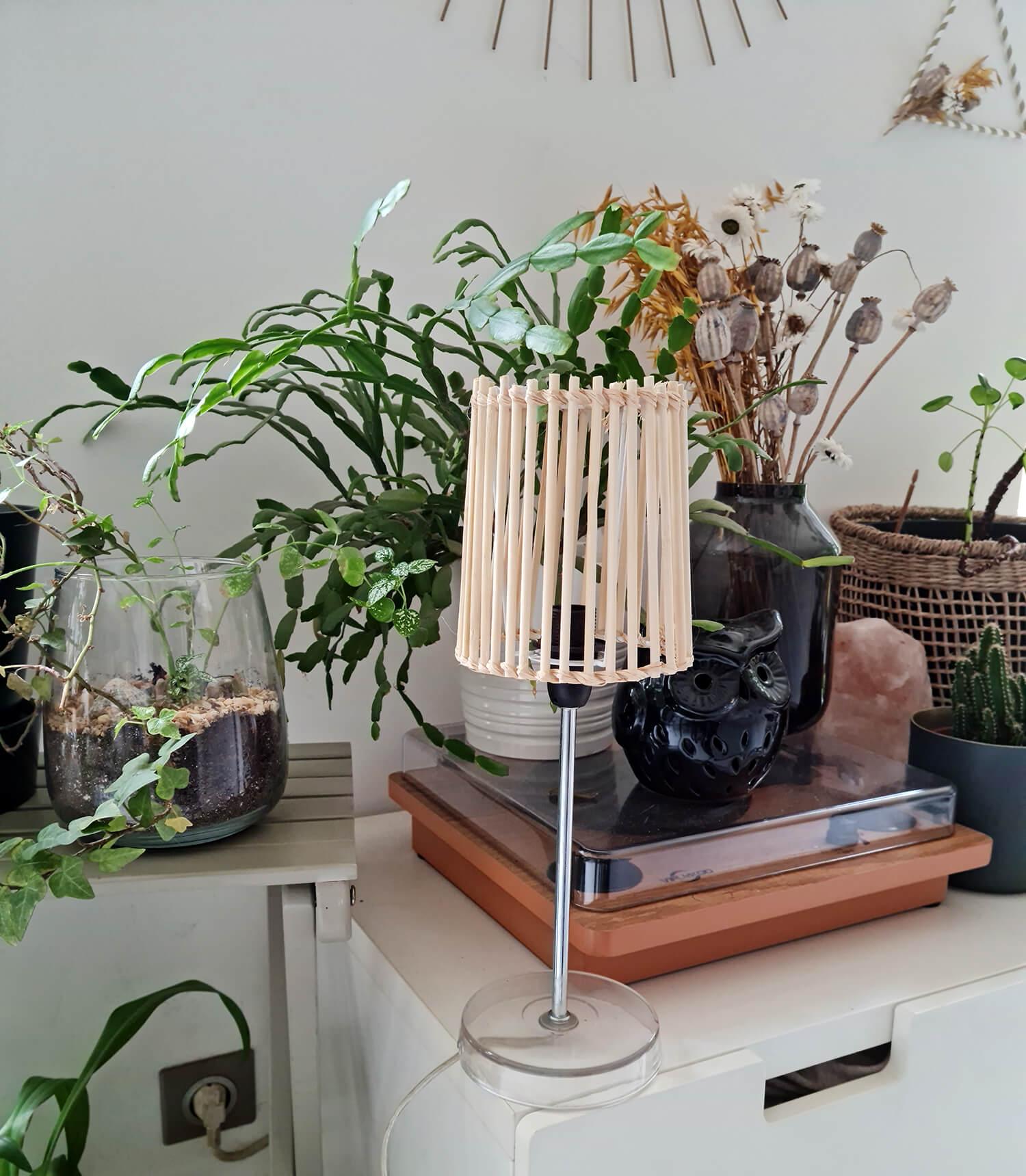 20210409 150846 - Fabriquer une lampe nature en bois pour diffuser une lumière douce