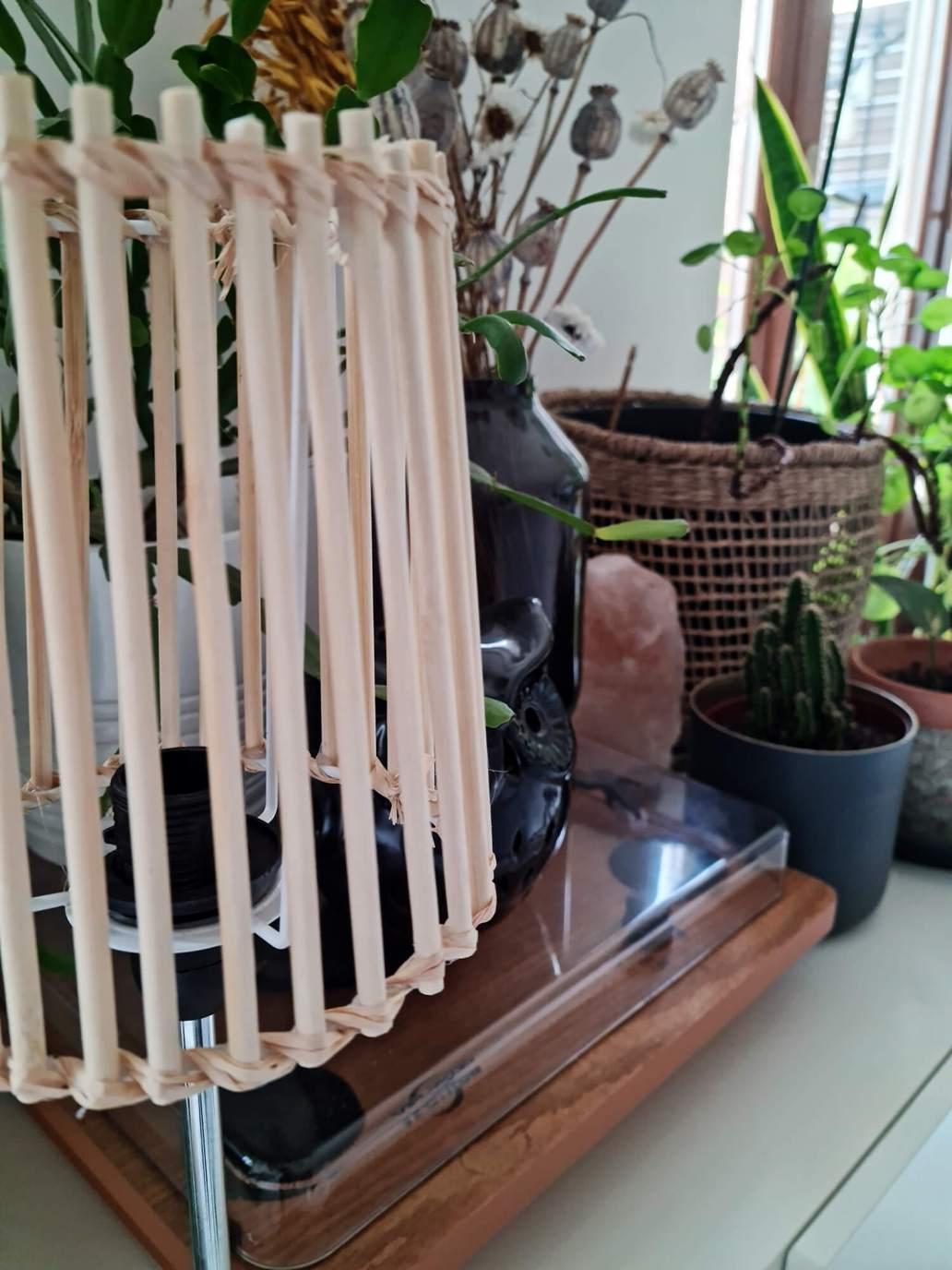 20210409 150905 - Fabriquer une lampe nature en bois pour diffuser une lumière douce
