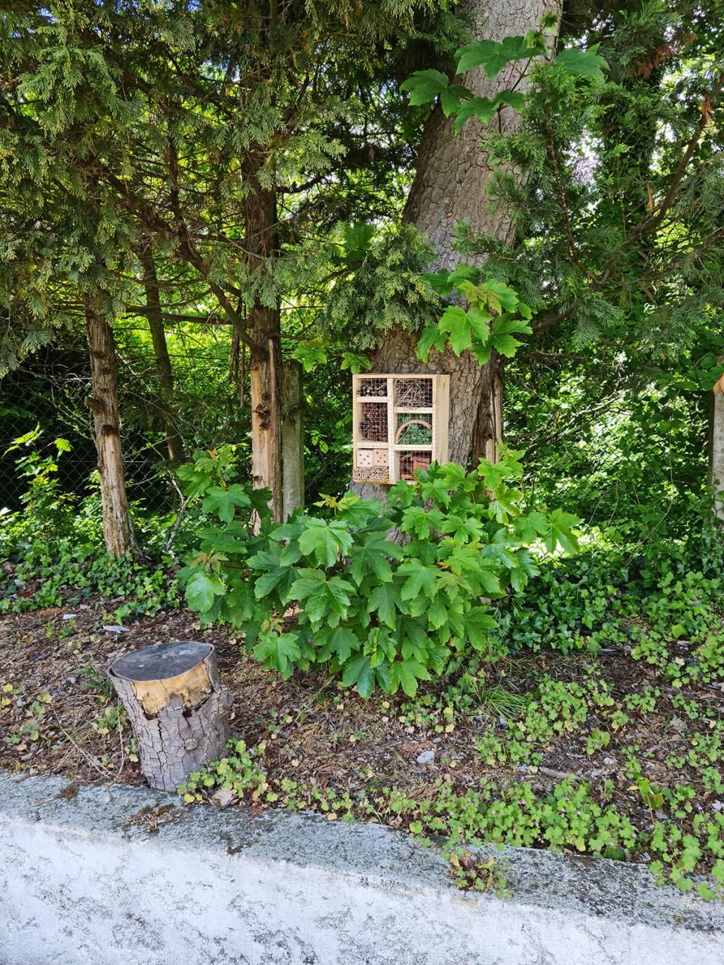 20210521 124909 - DIY jardin : construire un hôtel à insectes avec une caisse à vin
