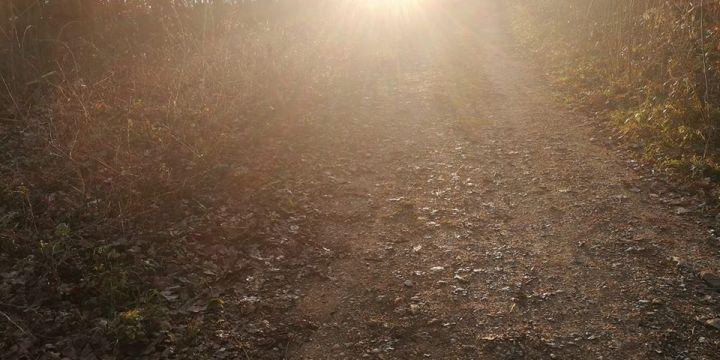Licht am Ende des Tunnels – oder: Der Überlebensmodus!