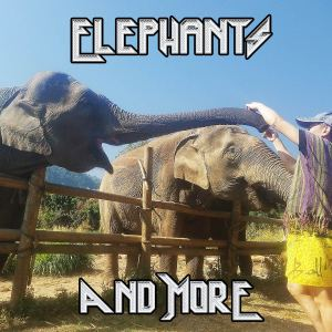 Elephants and More