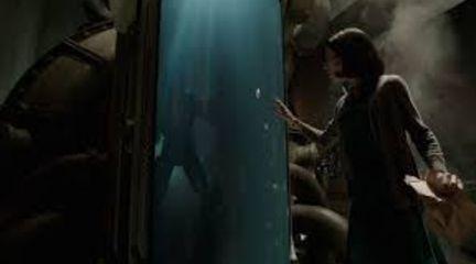 Del Toro confeziona un film di indubbia poetica sebbene la trama risulti a tratti prevedibile.