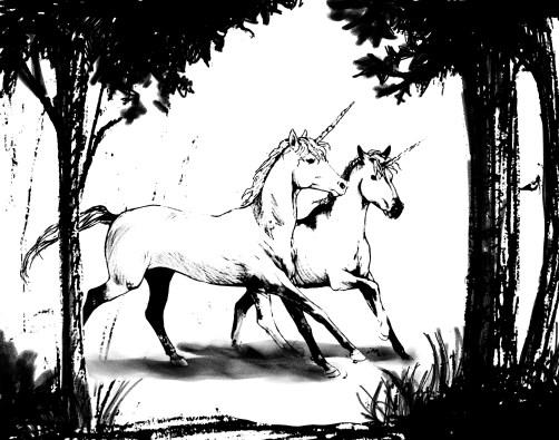 licorne-couple