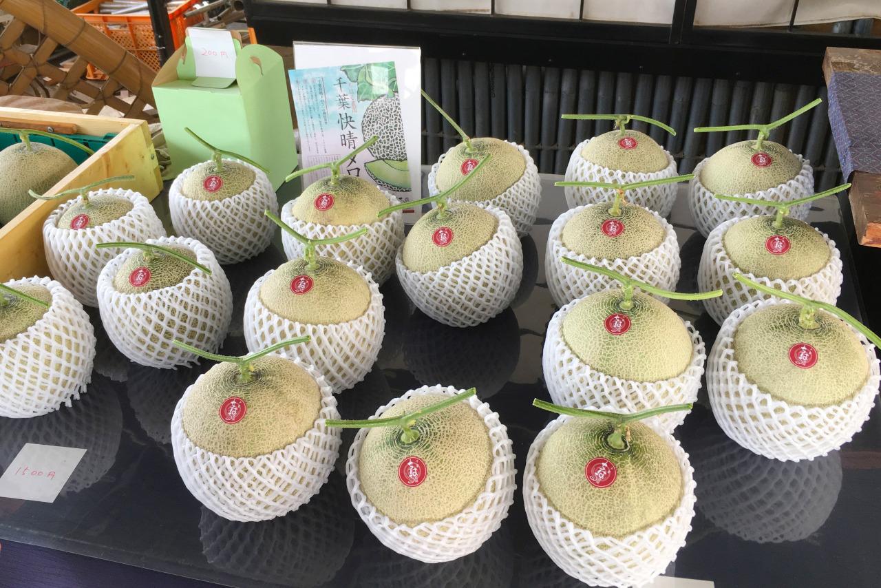 千葉市ちはる農園の数量限定メロンが大きくてジューシーで美味しい!値段や買える時期を徹底調査
