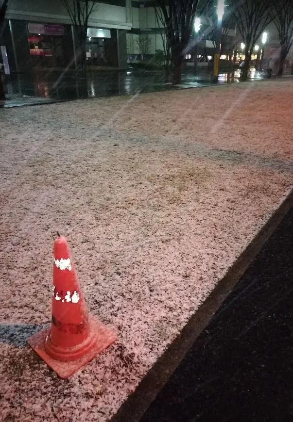 2019/01/31、千葉ニューの雪。