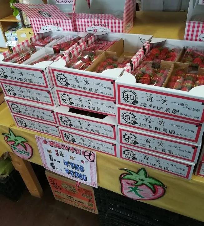 和田農園さんの2019のいちご01。