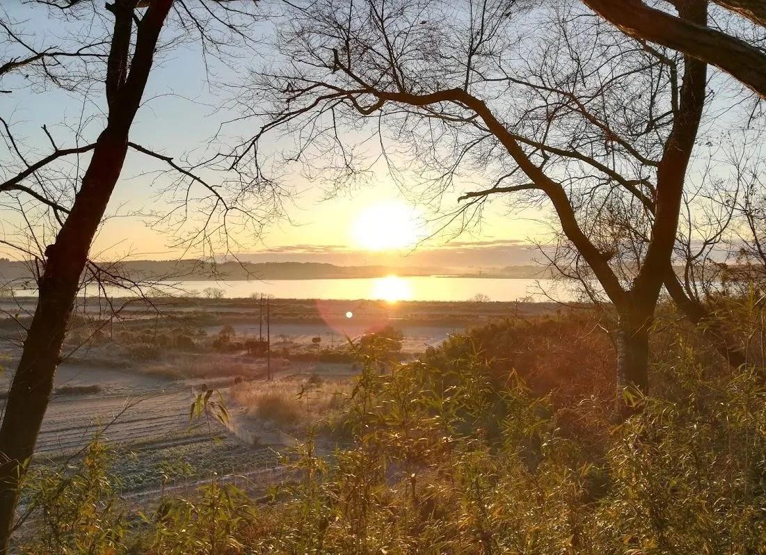 印旛沼の日の出。