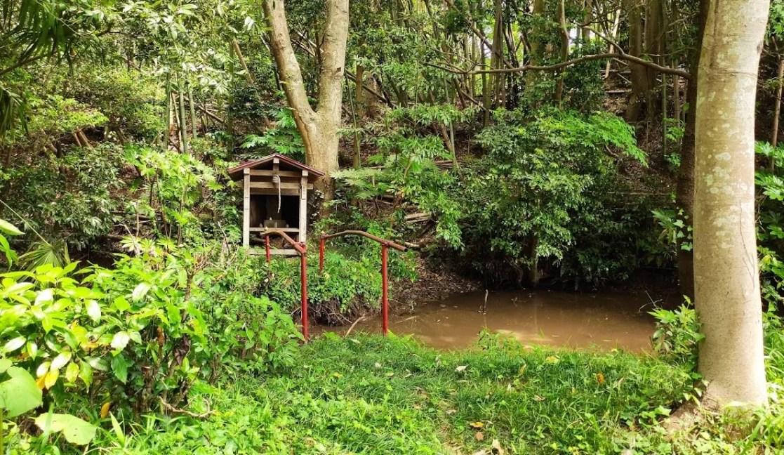 印西市瀬戸の「一本松湧き水」に行ってきました!06