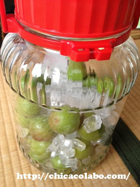 梅シロップ作り