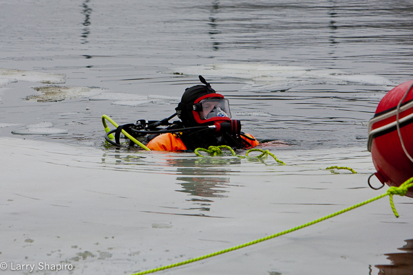 Divers search for missing dog in Buffalo Grove 1-26-12